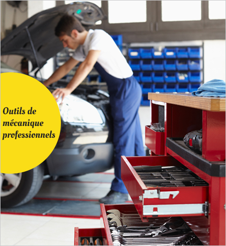 Vehicle & Parts