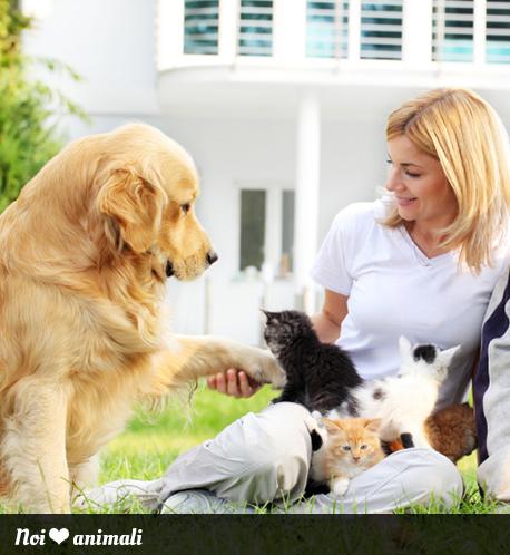 Articoli per articoli per animali for Articoli per cani